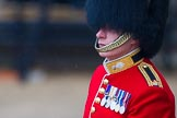 The Colonel's Review 2014. Horse Guards Parade, Westminster, London,  United Kingdom, on 07 June 2014 at 10:33, image #143