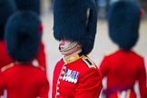 The Colonel's Review 2014. Horse Guards Parade, Westminster, London,  United Kingdom, on 07 June 2014 at 10:33, image #144