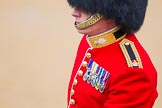 The Colonel's Review 2014. Horse Guards Parade, Westminster, London,  United Kingdom, on 07 June 2014 at 10:33, image #145