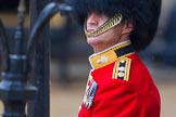 The Colonel's Review 2014. Horse Guards Parade, Westminster, London,  United Kingdom, on 07 June 2014 at 10:33, image #146