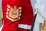 The Colonel's Review 2014. Horse Guards Parade, Westminster, London,  United Kingdom, on 07 June 2014 at 10:34, image #148