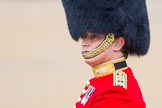 The Colonel's Review 2014. Horse Guards Parade, Westminster, London,  United Kingdom, on 07 June 2014 at 10:35, image #149