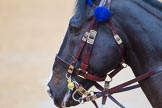The Colonel's Review 2014. Horse Guards Parade, Westminster, London,  United Kingdom, on 07 June 2014 at 10:35, image #151