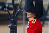 The Colonel's Review 2014. Horse Guards Parade, Westminster, London,  United Kingdom, on 07 June 2014 at 10:36, image #152