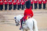 The Colonel's Review 2014. Horse Guards Parade, Westminster, London,  United Kingdom, on 07 June 2014 at 10:37, image #153