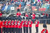 The Colonel's Review 2014. Horse Guards Parade, Westminster, London,  United Kingdom, on 07 June 2014 at 10:38, image #157