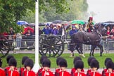 The Colonel's Review 2014. Horse Guards Parade, Westminster, London,  United Kingdom, on 07 June 2014 at 10:38, image #160