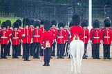 The Colonel's Review 2014. Horse Guards Parade, Westminster, London,  United Kingdom, on 07 June 2014 at 10:39, image #161