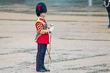 The Colonel's Review 2014. Horse Guards Parade, Westminster, London,  United Kingdom, on 07 June 2014 at 10:45, image #185