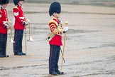 The Colonel's Review 2014. Horse Guards Parade, Westminster, London,  United Kingdom, on 07 June 2014 at 10:45, image #186
