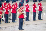 The Colonel's Review 2014. Horse Guards Parade, Westminster, London,  United Kingdom, on 07 June 2014 at 10:45, image #187