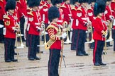 The Colonel's Review 2014. Horse Guards Parade, Westminster, London,  United Kingdom, on 07 June 2014 at 10:45, image #188