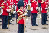 The Colonel's Review 2014. Horse Guards Parade, Westminster, London,  United Kingdom, on 07 June 2014 at 10:45, image #189