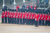 The Colonel's Review 2014. Horse Guards Parade, Westminster, London,  United Kingdom, on 07 June 2014 at 10:46, image #193