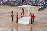 The Colonel's Review 2014. Horse Guards Parade, Westminster, London,  United Kingdom, on 07 June 2014 at 10:53, image #214