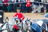 The Colonel's Review 2014. Horse Guards Parade, Westminster, London,  United Kingdom, on 07 June 2014 at 10:59, image #259