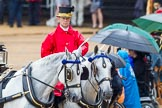 The Colonel's Review 2014. Horse Guards Parade, Westminster, London,  United Kingdom, on 07 June 2014 at 10:59, image #260