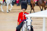 The Colonel's Review 2014. Horse Guards Parade, Westminster, London,  United Kingdom, on 07 June 2014 at 10:59, image #261