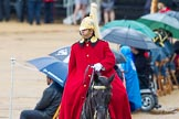 The Colonel's Review 2014. Horse Guards Parade, Westminster, London,  United Kingdom, on 07 June 2014 at 10:59, image #262
