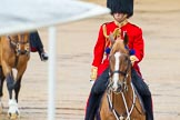 The Colonel's Review 2014. Horse Guards Parade, Westminster, London,  United Kingdom, on 07 June 2014 at 10:59, image #263