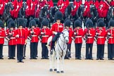The Colonel's Review 2014. Horse Guards Parade, Westminster, London,  United Kingdom, on 07 June 2014 at 11:00, image #270
