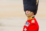 The Colonel's Review 2014. Horse Guards Parade, Westminster, London,  United Kingdom, on 07 June 2014 at 11:00, image #271