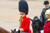 The Colonel's Review 2014. Horse Guards Parade, Westminster, London,  United Kingdom, on 07 June 2014 at 11:00, image #273