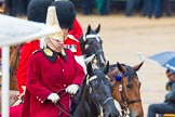 The Colonel's Review 2014. Horse Guards Parade, Westminster, London,  United Kingdom, on 07 June 2014 at 11:01, image #279