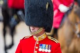 The Colonel's Review 2014. Horse Guards Parade, Westminster, London,  United Kingdom, on 07 June 2014 at 11:01, image #282