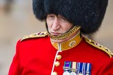 The Colonel's Review 2014. Horse Guards Parade, Westminster, London,  United Kingdom, on 07 June 2014 at 11:01, image #283
