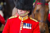 The Colonel's Review 2014. Horse Guards Parade, Westminster, London,  United Kingdom, on 07 June 2014 at 11:01, image #284