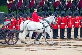 The Colonel's Review 2014. Horse Guards Parade, Westminster, London,  United Kingdom, on 07 June 2014 at 11:02, image #288