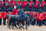 The Colonel's Review 2014. Horse Guards Parade, Westminster, London,  United Kingdom, on 07 June 2014 at 11:02, image #290