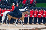 The Colonel's Review 2014. Horse Guards Parade, Westminster, London,  United Kingdom, on 07 June 2014 at 11:02, image #292