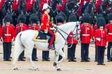 The Colonel's Review 2014. Horse Guards Parade, Westminster, London,  United Kingdom, on 07 June 2014 at 11:02, image #293
