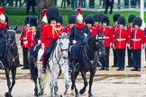 The Colonel's Review 2014. Horse Guards Parade, Westminster, London,  United Kingdom, on 07 June 2014 at 11:04, image #295