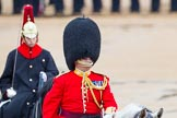 The Colonel's Review 2014. Horse Guards Parade, Westminster, London,  United Kingdom, on 07 June 2014 at 11:05, image #296