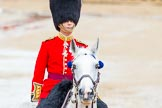 The Colonel's Review 2014. Horse Guards Parade, Westminster, London,  United Kingdom, on 07 June 2014 at 11:05, image #300