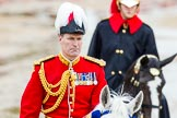 The Colonel's Review 2014. Horse Guards Parade, Westminster, London,  United Kingdom, on 07 June 2014 at 11:06, image #311