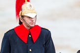 The Colonel's Review 2014. Horse Guards Parade, Westminster, London,  United Kingdom, on 07 June 2014 at 11:06, image #313