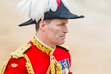 The Colonel's Review 2014. Horse Guards Parade, Westminster, London,  United Kingdom, on 07 June 2014 at 11:06, image #314