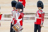 The Colonel's Review 2014. Horse Guards Parade, Westminster, London,  United Kingdom, on 07 June 2014 at 11:10, image #331