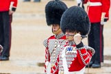 The Colonel's Review 2014. Horse Guards Parade, Westminster, London,  United Kingdom, on 07 June 2014 at 11:10, image #332