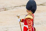 The Colonel's Review 2014. Horse Guards Parade, Westminster, London,  United Kingdom, on 07 June 2014 at 11:11, image #337