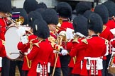 The Colonel's Review 2014. Horse Guards Parade, Westminster, London,  United Kingdom, on 07 June 2014 at 11:12, image #341