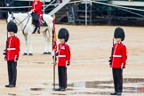 The Colonel's Review 2014. Horse Guards Parade, Westminster, London,  United Kingdom, on 07 June 2014 at 11:12, image #342