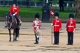 The Colonel's Review 2014. Horse Guards Parade, Westminster, London,  United Kingdom, on 07 June 2014 at 11:14, image #349