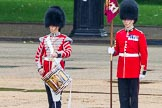 The Colonel's Review 2014. Horse Guards Parade, Westminster, London,  United Kingdom, on 07 June 2014 at 11:14, image #350