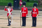 The Colonel's Review 2014. Horse Guards Parade, Westminster, London,  United Kingdom, on 07 June 2014 at 11:14, image #352