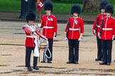 The Colonel's Review 2014. Horse Guards Parade, Westminster, London,  United Kingdom, on 07 June 2014 at 11:14, image #353